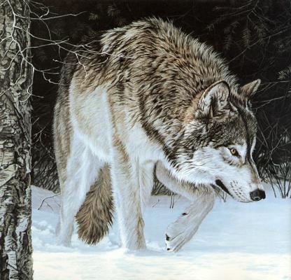 Рон Паркер. Серый волк