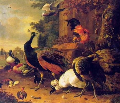 Мельхиор де Хондекутер. Птицы
