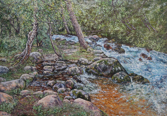 Irina Viktorovna Korotoyakskaya (Dronova). Mountain river