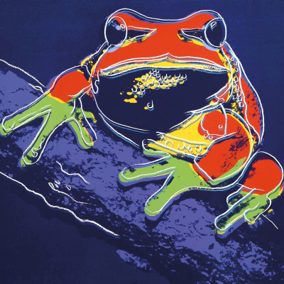 Andy Warhol. Tree frog