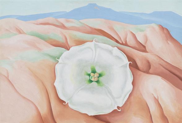 Georgia O'Keeffe. Datura and Pedernal (table mountain)