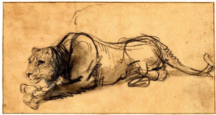 Rembrandt Harmenszoon van Rijn. A lioness devouring a bird