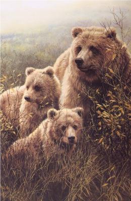 Джон Сирей-Лестер. Медведи гризли