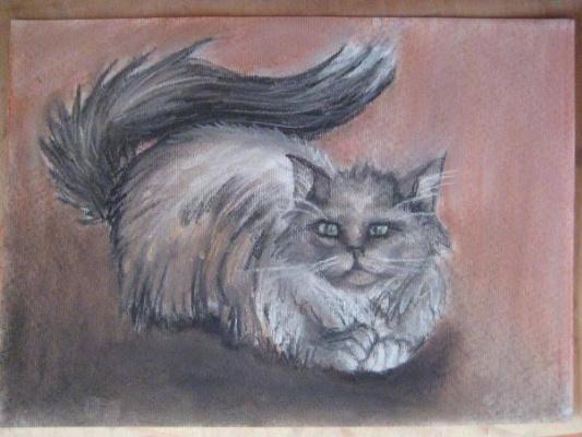 Sophie Wasilewska. A  burmese cat (#11)