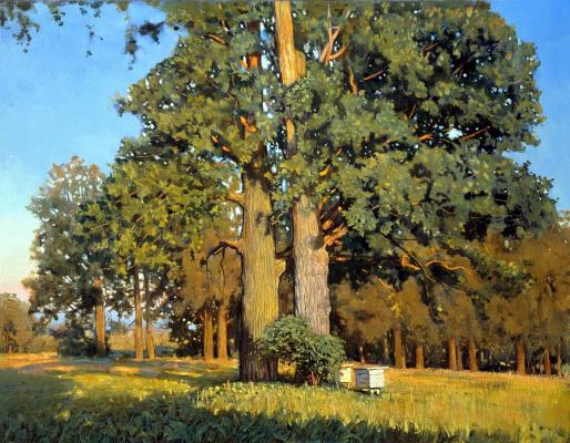 Nikolay Y. Anokhin. Old oaks