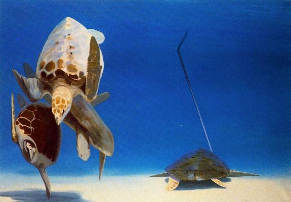 Жиль Эло. Черепахи под водой