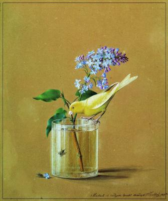 Федор Петрович Толстой. Ветка сирени и канарейка