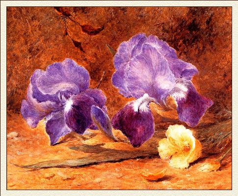 Джон Джессоп Хардвик. Цветы
