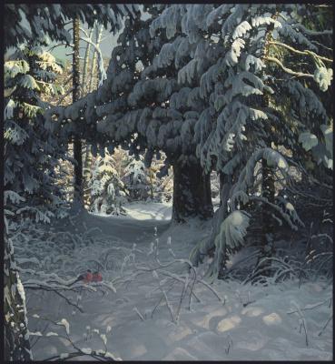Sushienok64 @ mail.ru Mikhailovich Sushenok Igor. Winter kingdom