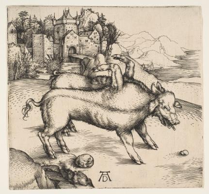 Albrecht Durer. Pig-freak of Landseer
