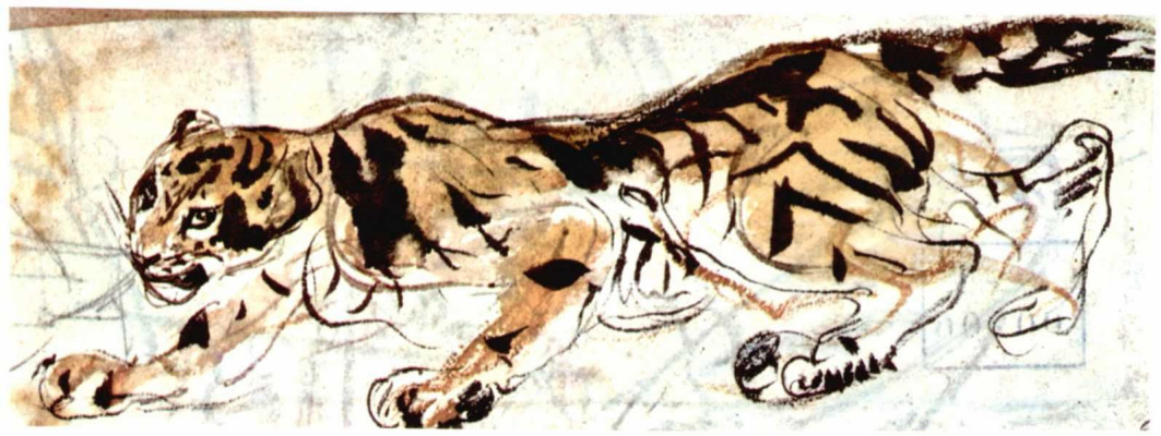 Eugene Delacroix. A tiger crouching to the left