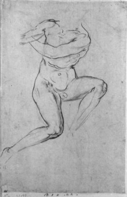 Raphael Santi. Study of a Nude for battle scenes