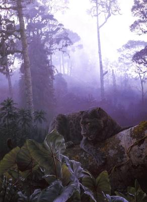Даниэль Смит. Африканское черное дерево