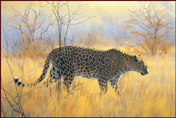 Зимнее утро леопард