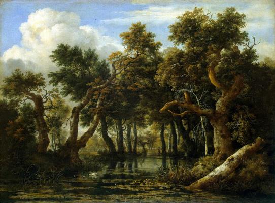Jakob van Isaacs Ruisdael. Bog