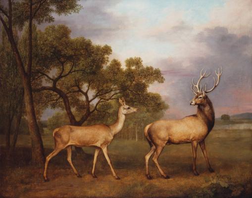 George Stubbs. Red deer