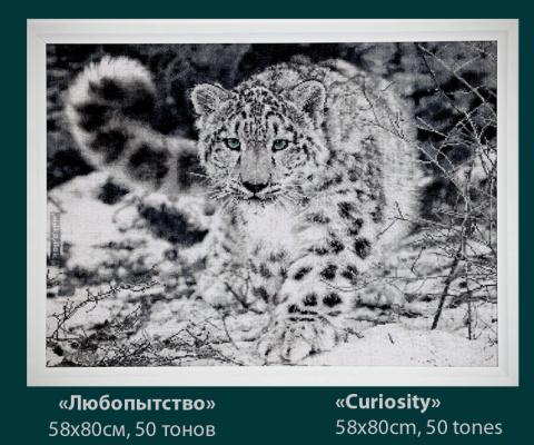 """Natalia Mikolyuk. """"Curiosity"""""""