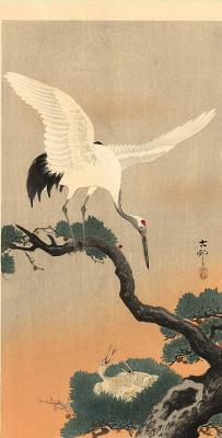Охара Косон. Птицы 76