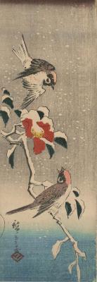 Utagawa Hiroshige. Sparrows and snow-covered Camellia