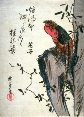 Utagawa Hiroshige. Golden pheasant on a rock