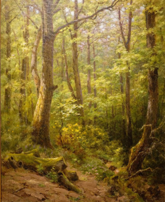 Kondrat Evdokimovich Maksimov. Oak forest in the mountains of the Caucasus