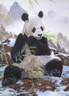Ян Мартин Макгуайр. Панда