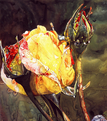 Джозеф Рафаэль. Роза
