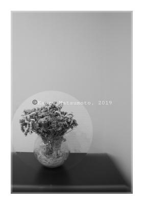 Kaoru Matsumoto. Still life set (2)