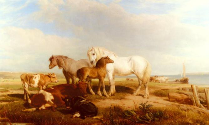 Лошади и скот