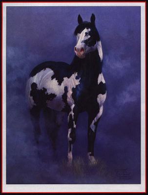 Чак де Хаан. Черный конь
