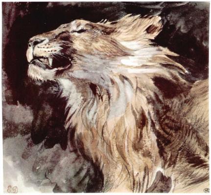 Eugene Delacroix. The head of a lion