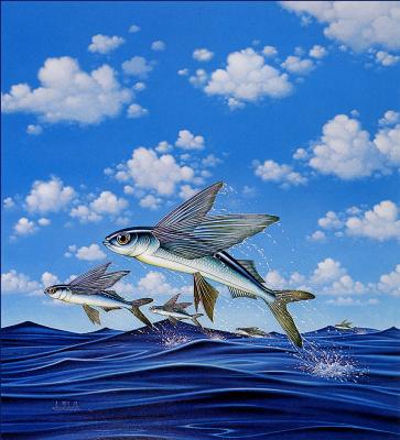 Бралдт Бралдс. Рыбы