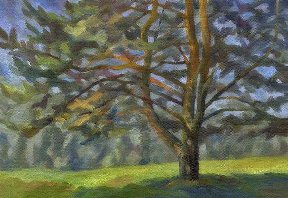 "Andrei Ivanovich Borisov. Study for the painting ""Big Pine"""