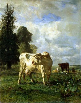 Констан Тройон. Коровы в поле