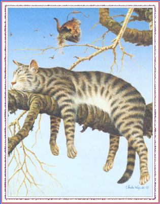 Чарльз Высоцкий. Ленивый кот