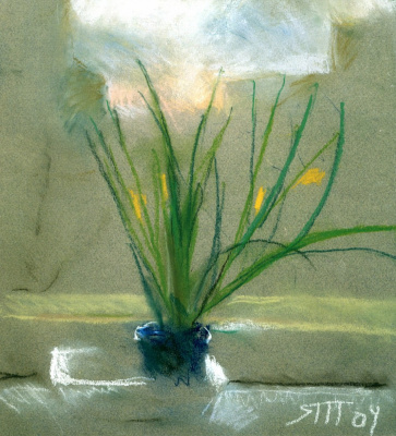 Tetyana Yablonska. Plant