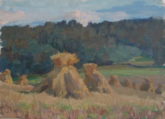 Nina Vasilievna Sedova. Rye field