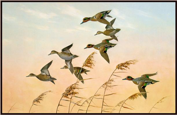 Оуэн Громм. Полет птиц