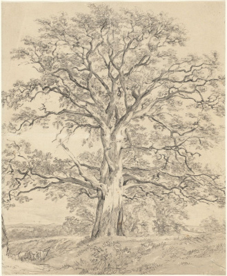 John Constable. A large oak tree