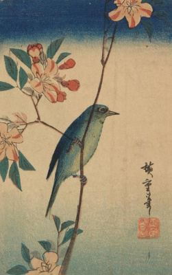 Utagawa Hiroshige. White-eye on the branch of a flowering wild Apple