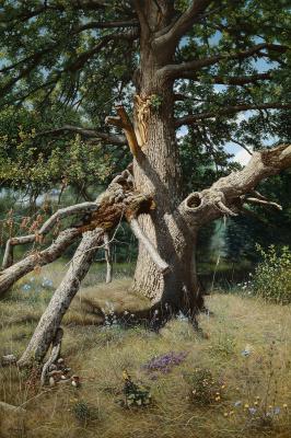 Alexander Mikhailovich Sushenok. Oak tree lit by the sun. 2019.