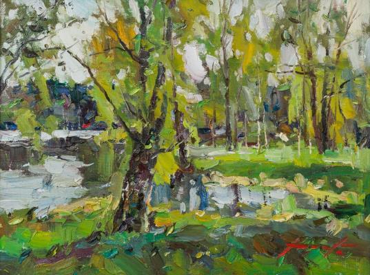 Константин Долгашев. Весна на Астраханке