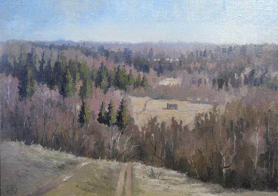 Ольга Акрилова. Ilyinsky forests