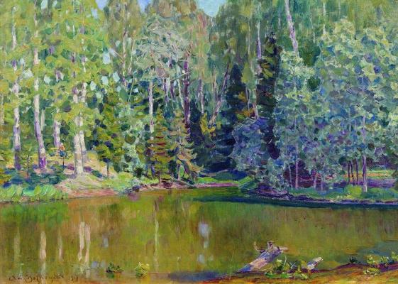 Apollinarius Mikhailovich Vasnetsov. Pond
