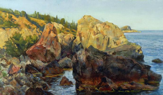 Vladimir Vladislavovich Vidyaykin. Sunset at the sea
