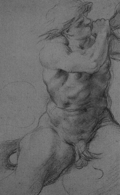 Annibale Carracci. A sketch of the male body