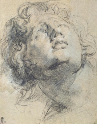 Anthony van Dyck. Head of a youth looking up