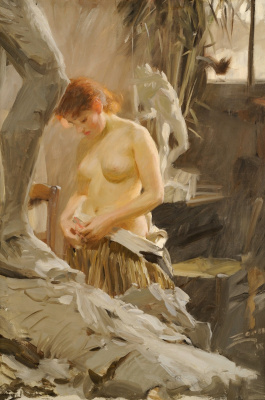 Anders Zorn. Workshop Extreme