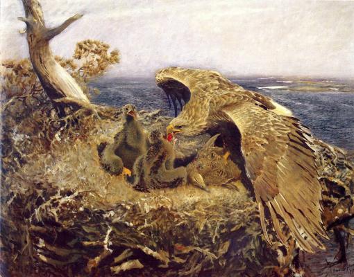 Бруно Лильефорс. Гнездо морского орлана