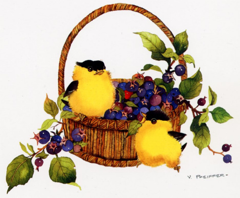 Валери Пфайфер. Щеглы и ягоды